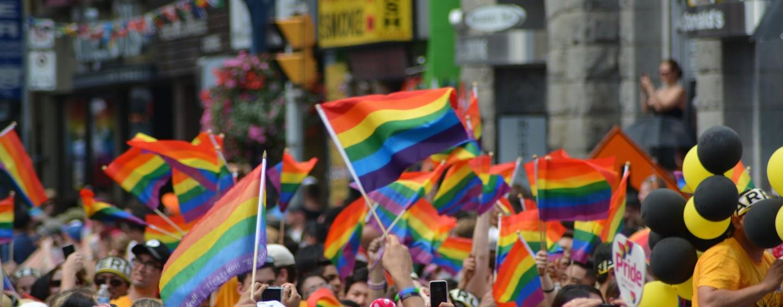 Emplois et bénévolats dans une gay pride